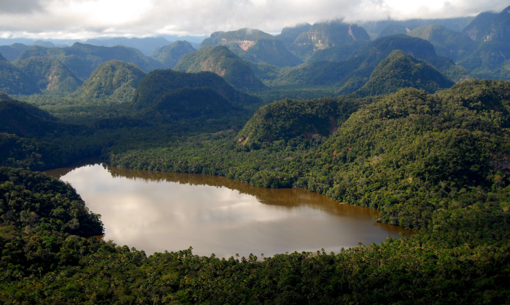 A photo of a lagoon in the Peruvian rainforest